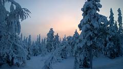 Ruka (timo_w2s) Tags: winter snow sunrise finland frosty lapland ruka