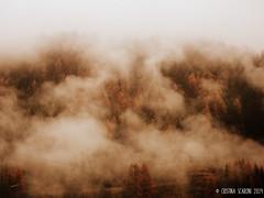 The Fog (Pelle&Calamaio) Tags: autumn italy mountain fall colors rain fog clouds twilight italia deep autumnleaves melancholy autunno montagna brescia malinconia autumntrees elizabethtown pontedilegno lovelyweather welcomeautumn autumnsmell benvenutoautunno