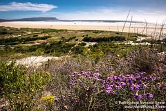 Noordehoek Beach, Cape Town, South Africa
