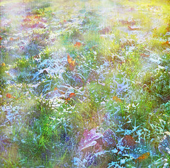 Sunlight Dancing on Frosty Grass (virtually_supine) Tags: winter sunlight painterly abstract frost digitalart creative textures layers drybrush orton fallenleaves digitalmanipulation vividimagination trolled painterlyeffects awardtree magicunicornverybest pse9 photoshopelements9