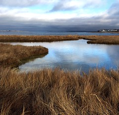 Sky Reflection (Barbara Braman) Tags: winter seascape beach reflections landscape capecod barnstable barnstablema iphoneography snapseed iphone6plus