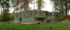 Pchotn srub MO-S-24 Signl (jidhash) Tags: tree war czech bunker technical fortification fortress czechoslovakborderfortifications