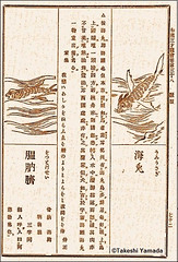 Sea Rabbit (. . . Monafluffchus japonicus) in the right in Wakansansaizukai (), Volume 38 (38) 72 (Page 72, beasts), Japan, ca 1712. Woodblock print on paper. (searabbit22) Tags: ny newyork sexy celebrity art hat television fashion animal brooklyn painting asian coneyisland japanese star costume tv newjersey google king artist dragon cosplay manhattan wildlife famous gothic goth performance conservation save pop taxidermy cnn tuxedo bikini tophat playboy whale entertainer takeshi samurai genius mermaid amc mardigras salvadordali billclinton billgates aol vangogh curiosities sideshow jeffkoons globalwarming takashimurakami pablopicasso steampunk yamada damienhirst cryptozoology freakshow barackobama jerseydevil seara immortalized takeshiyamada museumofworldwonders roguetaxidermy searabbit ladygaga climategate minnesotaassociationofroguetaxidermists