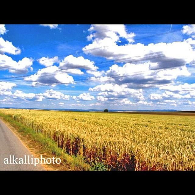 #United#Arab#Emirates#Abudhabi#Dubai#Sharjah#Ajman#Rasalkhaimah#Alfujairah#Ummalquwain#Uk#Glasgow#Edinburgh#Manchester#London#Turkey#Istanbul#Bursa#Norway#Oslo#Spain#Sweden#Stockholm#Thailand#Germany#Oman