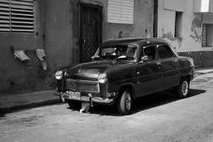 Cuban car and a cat, par Franck Vervial