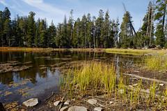 Siesta Lake, Yosemite (Ian_Boys) Tags: california usa lake fuji yosemite siesta fujifilm 14mm siestalake xt1