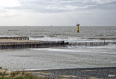 Cadzand (noenkelMi) Tags: sea seascape holland beach strand landscape waves nederland thenetherlands noordzee zeeland zee northsea cadzand landschap breakwater golven palen oostburg radartoren golfbrekers paalhoofden zeelandschap timbergroyne