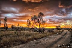 Madagascar 2014--24 (Bogdan Utza) Tags: sunset nature landscape nikon wildlife urlaub landschaft madagascar bogdan d800 rundreise 2014 madagaskar utza