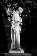 Cardenal Cisneros (rafa.esteve) Tags: madrid blackandwhite sculpture history statue architecture blackwhite cardinal alcaladehenares