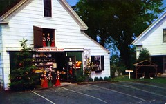 Christmas Tree Gift Shops Yarmouth Port Cape Cod MA (Edge and corner wear) Tags: santa christmas light tree up sign choir yard vintage restaurant stand pc postcard illuminated plastic souvenir gifts ornaments manger cape arrow claus roadside cod electrical figures curio