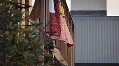 Laundry Day (Theen ...) Tags: roof brown lumix iron wind balcony dry laundry adelaide hanging towels sheet railing corrugated fluttering patterned theen torrensville