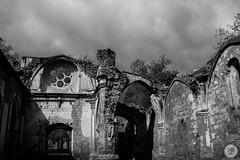 Monasterio de piedra (irenegf) Tags: espaa blancoynegro arquitectura bn zaragoza monasteriodepiedra monocromtico gtico