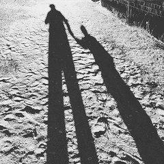#likefatherlikeson #blackandwhite #autumn is here (Kontiohautomo) Tags: autumn blackandwhite likefatherlikeson uploaded:by=flickstagram instagram:venuename=hujakko2cc384c3a4nekoski instagram:venue=530150375 instagram:photo=10927529152132514461080390955