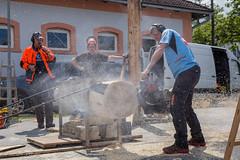 _MG_6684 (aj.piccs) Tags: chainsaw motor stihl timbersports motorsge