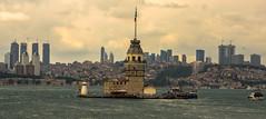 IMGP2480-2 (UmitCukurel) Tags: nightphotography sea night cat turkey puente mar pentax turkiye istanbul gato turquia bogazici bosphorus kedi kizkulesi maidentower k3ii