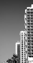 Untitled (David K. Marti) Tags: street city houses windows light shadow sky urban bw sun sunlight white plant black nature monochrome architecture buildings outside outdoors mono israel daylight blackwhite telaviv day cityscape exterior natural outdoor monotone structure architectural east palmtrees hotels middle structural