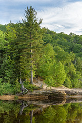 Miners River Outlet (2016-06-18 1780) (bechtelsf) Tags: water nikon michigan upperpeninsula picturedrocksnationallakeshore minersbeach minersriver d810