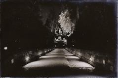 Villa D'Este Spettrale (Razgriz88) Tags: sepia nikon ghost fantasma seppia nikond300 nikon1735mmf28ded