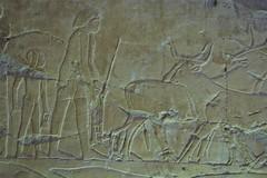 Egitto, Luxor le tombe dei nobili 137 (fabrizio.vanzini) Tags: luxor egitto 2015 letombedeinobili