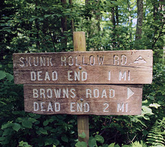 Junction (Nicholas_T) Tags: summer sign pennsylvania creativecommons signpost endlessmountains brownsroad brownroad loyalsockstateforest lycomingcounty skunkhollowroad
