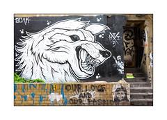 Graffiti (THIS-1), East London, England. (Joseph O'Malley64) Tags: door uk greatbritain england streetart london wall graffiti mural paint britain render steps entrance spray litter doorway vegetation british walls cans exit aerosol brickwork eastend eastlondon wallmural muralist this1 bennaz
