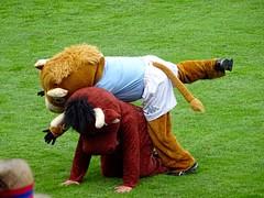 DSC00715 (melobatz) Tags: rugby ernest finale stade wallon prod2 aviron aurillacois boayonnais