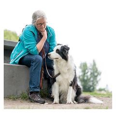 Bonding _ 2 (leo.roos) Tags: rescue dog pet hoorn hond bordercollie sanctuary brody bonding marjo carlzeiss asiel darosa leoroos a7rii sonyczfe5518