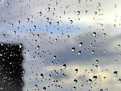 Raindrops - regnet es noch? (eagle1effi) Tags: macro weather yahoo experiment experience raindrops makro regentropfen sx60 kshotcc highendphoto