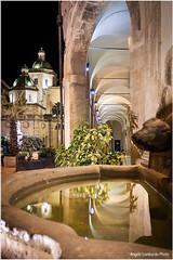 Uscita_Tra_I_Vicoli_2016_0005 (Angelo_Lombardo) Tags: piazzadellarepubblica porticato cupole mazaradelvallo palazzodelseminario cattedraledelsantissimosalvatore ivicolidelmediterraneo