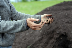 Nuestro Huerto Community Farm (NRCSMassachusetts) Tags: urban massachusetts surface farmland soil land compost worcester