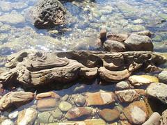 Aftis (bouzegza) Tags: rocher mer sea rock algeria algerie jijel mere بحر شاطئ صخري صخور الجزائر جيجل