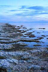 Salton Sea, California (Anne McKinnell) Tags: saltonsea california seascape nature