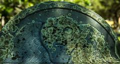 (Rodney Harvey) Tags: death head gravestone skull cape cod massachusetts wings cemetry new england lichen spooky creepy eerie