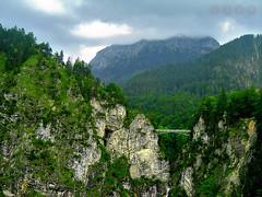 Bridge crossing the Alps. (Javier Quesada Molina) Tags: green verde mountain montaa paisaje landscape germany alemania trees arboles bridge puente rocks rocas precipicio cliff bavaria alps alpes