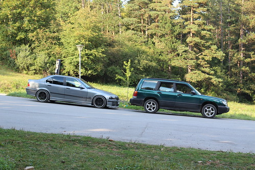 E36 and Forester