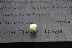 9/11 Tribute Center (netotorres82) Tags: new york trip city 911 nine eleven wtc world trade center rose names victims flower yellow
