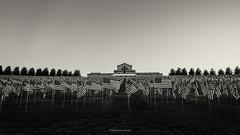 (B.L. Scherliss) Tags: flagsofvalor forestpark stlouis arthill saintlouisartmuseum
