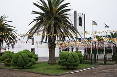 IMGP6453.jpg (jean.deines) Tags: portugal madeira madere santoantoniodaserra santoantóniodaserra
