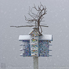 Snow Falls on Damon's Point (JMichaelSullivan) Tags: snow ed 100v pentax massachusetts pda birdhouse 600v if smc 200v f4 500v k3 marshfield 2014 700v 300v 5f 1000v 400v 900v 800v damonspoint 60250mm da60250mm jsfoto1956