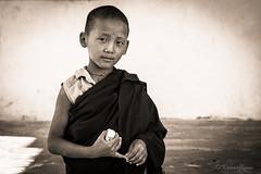 Natural wisdom (karmajigme) Tags: boy portrait blackandwhite bw monochrome childhood nikon child noiretblanc religion monk bhuddhist
