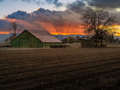 Christmas Eve in East County (mikeSF_) Tags: california county sunset green clouds barn rural landscape pentax farm country rows crop nik marsh plow brentwood byron antioch hdr oakley j4 contracosta pentax645d wwwmikeoriazenfoliocom a80160 mikeoriaphotography wwwmikeoriacom