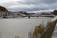 Lyon - Pont Schuman (larsen & co) Tags: france lyon rhne pont vaise rhnealpes lasane modesdoux pontschuman