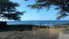 20141109_094633 (dntanderson) Tags: hawaii maui 2014 november09