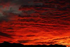 Sunset 11 14 14 #78 (Az Skies Photography) Tags: november sunset red arizona sky orange cloud sun black rio yellow set skyline clouds canon skyscape eos rebel gold golden twilight dusk 14 salmon az rico explore 2014 nighfall arizonasky arizonasunset riorico rioricoaz t2i 111414 arizonaskyline canoneosrebelt2i eosrebelt2i cloudsstormssunsetssunrises arizonaskyscape 11142014 november142014