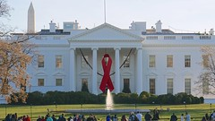 Commemorative Red Ribbon White House 2014 World AIDS Day 50182