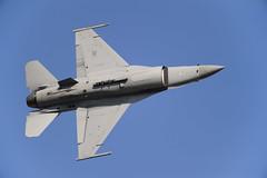 /  14 F-16C() (kariya) Tags: festival aircraft air f16 falcon  fighting base jasdf  rjfn  nyutabaru nyuta