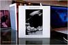 pauline murray & the invisible girls (japanese forms) Tags: bokeh vinyl single 1980 postpunk 45rpm petersaville illusive martinhannett paulinemurray trevorkey stevehopkins robertblamire theinvisiblegirls ive1 ©japaneseforms2014