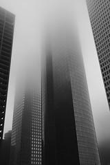 (eflon) Tags: bw monochrome fog downtown texas tx foggy houston bldgs