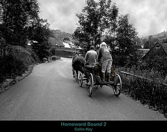 Homeward Bound 2 (shumpei_sano_exp9) Tags: slovensko slovakia slowakei tatra littlestories pferdewagen horsedrawnwagon blackwhiteaward picswithsoul multimegashot traditionalvillagelife artofimages collinkey traditionalmeansoftransport traditionelleartdestransports malfrankov slovakianvillage slowakischesdorf traditionellesdorfleben