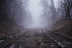 Tracks Into Fog (zuni48) Tags: railroad mist weather fog traintracks railroadtracks zunikoff